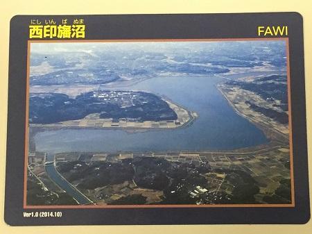 20160606西印旛沼19
