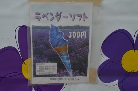 20160630佐倉ラベンダーランド15