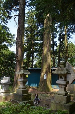 20160701稲荷山公園05