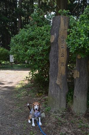20160701稲荷山公園02