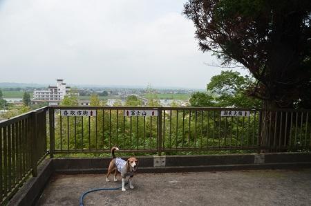 20160701稲荷山公園09