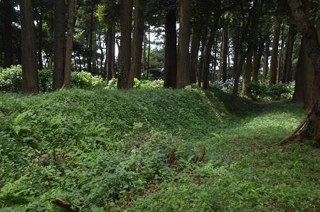 20160701稲荷山公園22