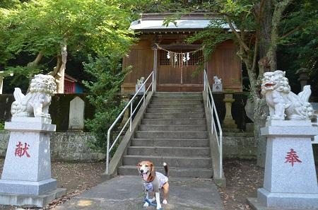 20160701権現山公園09
