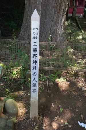 20160701権現山公園08