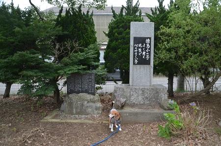20160701徳島小学校09