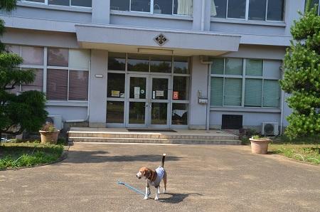 20160701武田小学校06