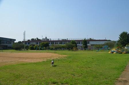 20160701武田小学校17