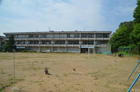 20160701要小学校26