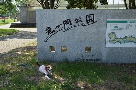 20160707竜ヶ丘公園01