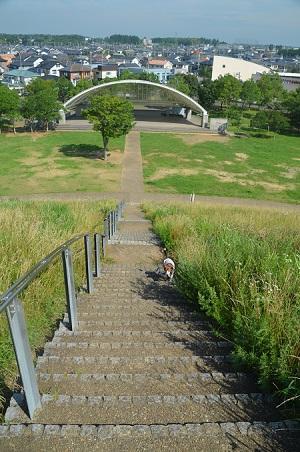 20160707竜ヶ丘公園11