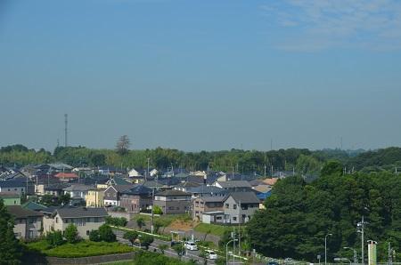 20160707竜ヶ丘公園16