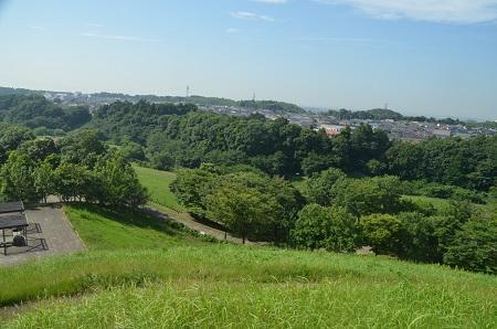 20160707竜ヶ丘公園20