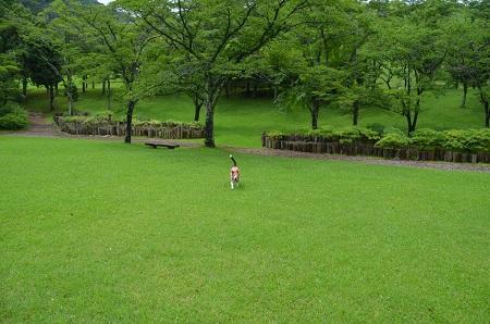 20160715ダム広場公園16