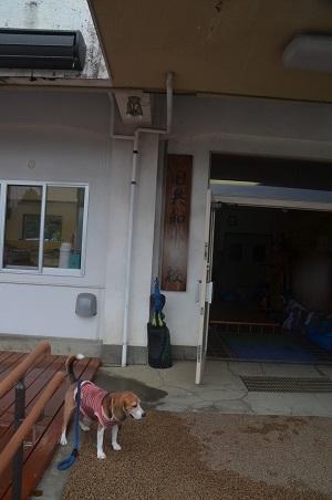 20160715共和小学校16