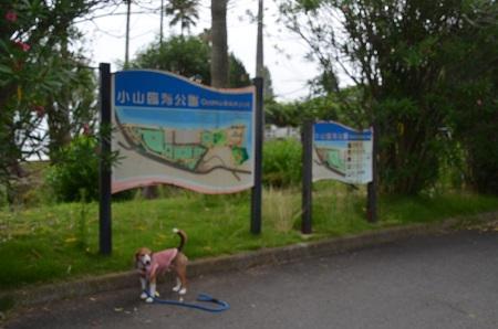 20160715小山臨海公園01