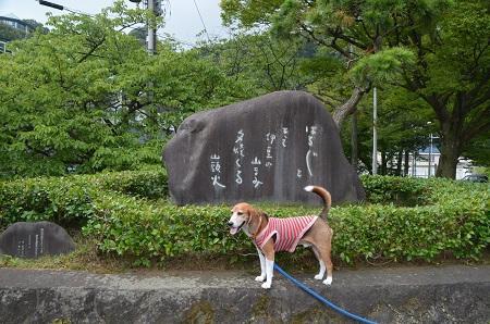 20160715小山臨海公園08