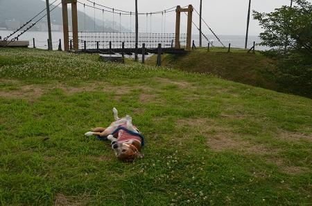 20160715小山臨海公園17