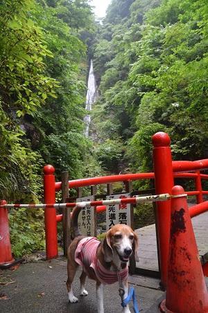 20160715洒水の滝16
