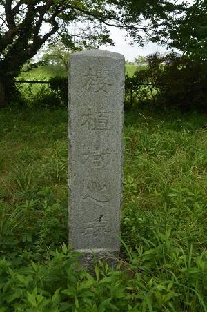 20160720長門川公園14