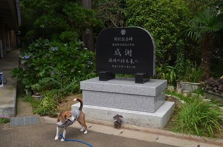 20160720匝瑳小学校09
