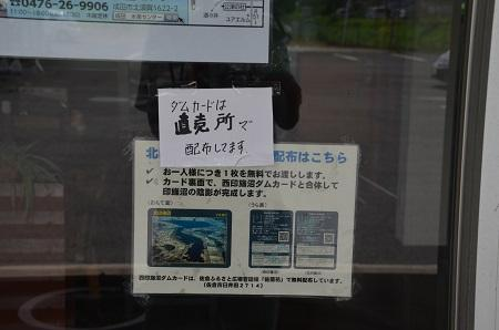 20160720北印旛沼02