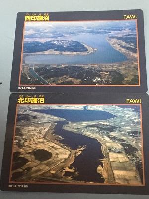 20160720北印旛沼21