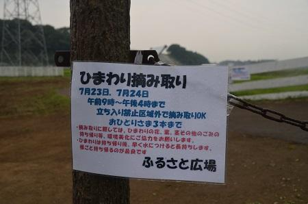 20160726ふるさと広場05