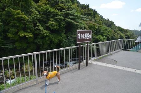 20160729音止の滝01