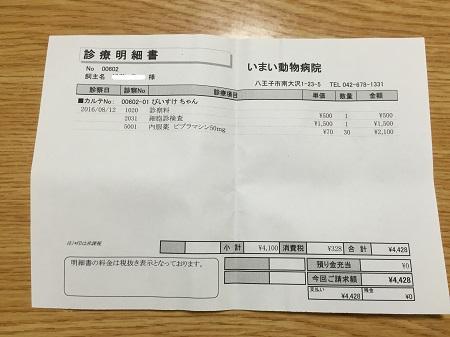 20160812今井動物病院10