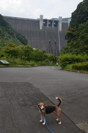 20160812宮ケ瀬ダム01