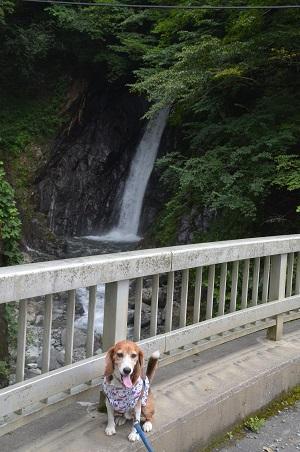 20160823エボラ沢の滝01