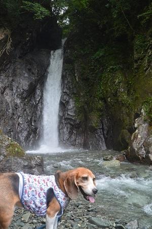 20160823エボラ沢の滝10
