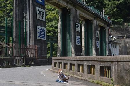 20160823道志ダム02