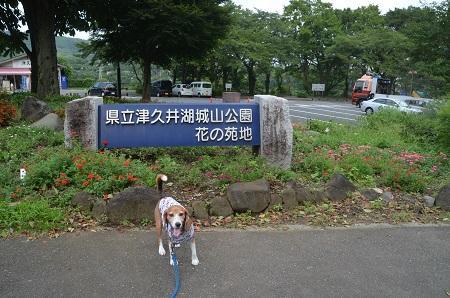 20160823津久井湖01