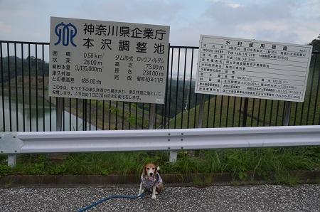 20160823本沢ダム07