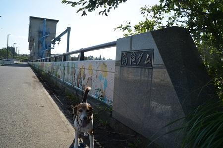 20160831高滝ダム19