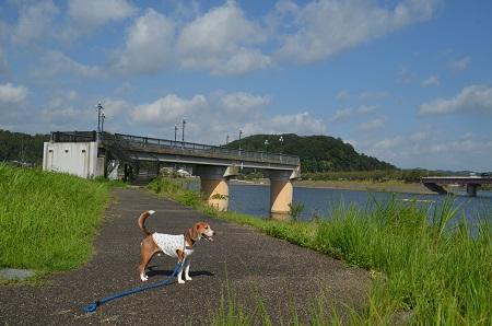 20160831高滝湖08
