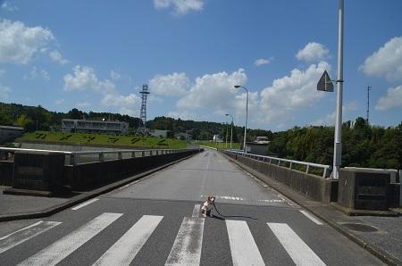 20160831亀山ダム10