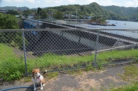 20160831亀山ダム16