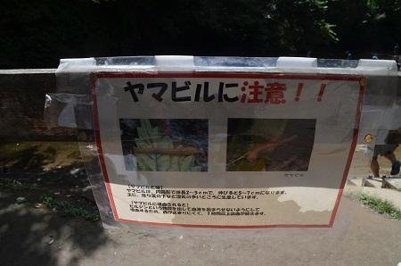 20160831清水渓流広場10