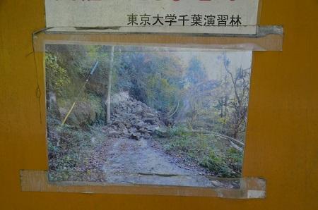 20160831折木沢03
