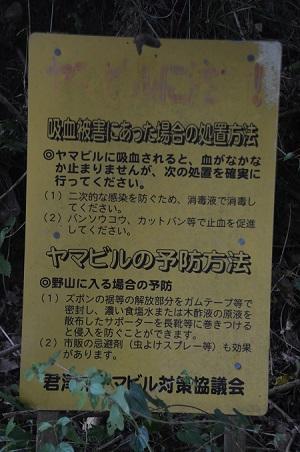 20160831折木沢08