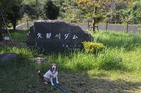 20160831矢那川ダム02