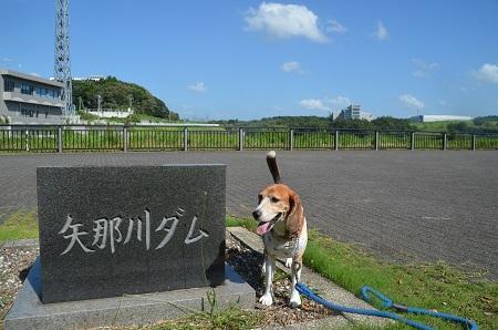 20160831矢那川ダム01