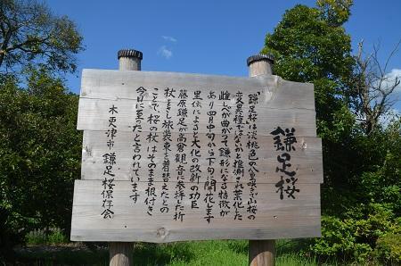 20160831矢那川ダム13