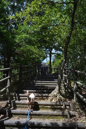 20160831笹川湖展望台09