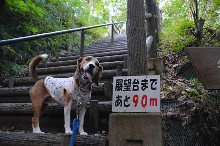 20160831笹川湖展望台07