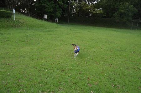 20160901佐倉城址公園22