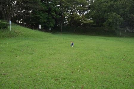 20160901佐倉城址公園21