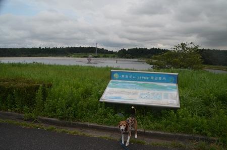 20160907東金ダム02